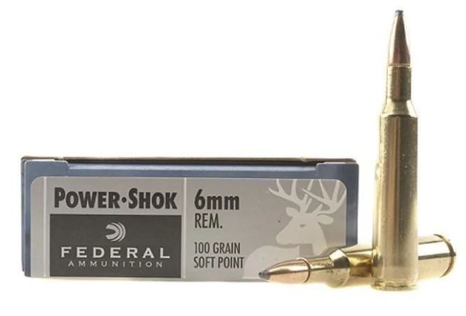 Federal Power-Shok 6mm Remington, 100 GR Soft Point, Box of 20