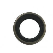Sierra C-Seal/Oil Seal